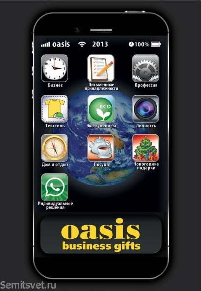 oasis_business_2013